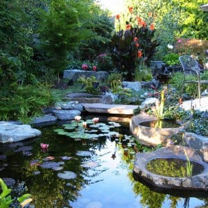 A Pond Makes Beautiful Water Feature To Any Landscape Photo Courtesy Of Clic