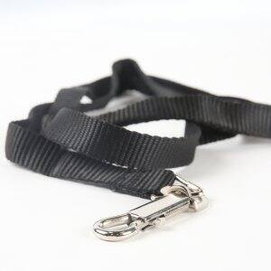 dog leash (Photo by Steve C. Mitchell)