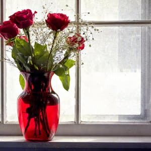 Roses on a window sill