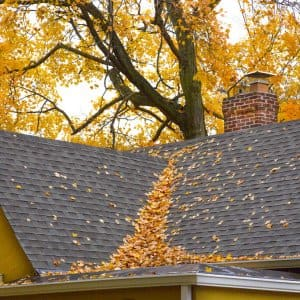 Taking care of some simple fall chores will help maintain your foundation and home exterior. (Photo by Frank Espich)