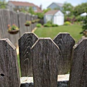 fence enclosing a yard
