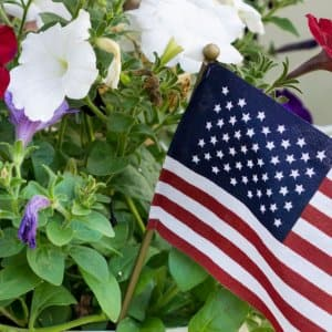 red, white and blue container planter
