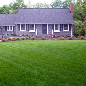 landscaped front lawn