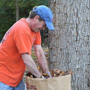man picking up leaves