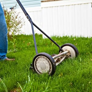 reel lawn mower mowing grass