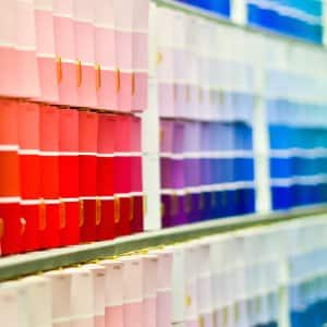 paint chips in store