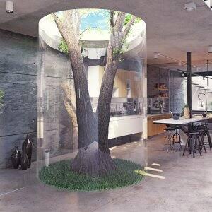 tree inside a house