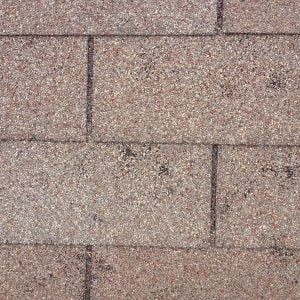 close up of hail damage to a shingle roof