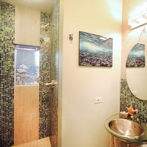 shower with fish tank
