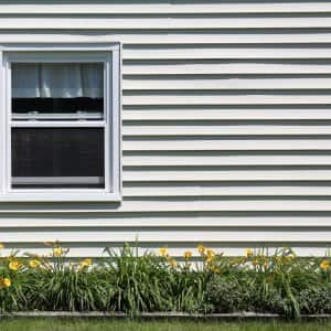 a house with vinyl siding, a window and some yellow flowers