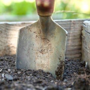 spade in vegetable garden soil