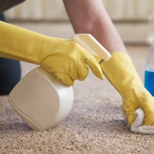 gloved hands cleaning carpet with spray bottle and cloth