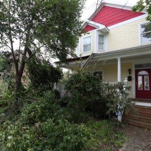 storm damage, wind damage, fallen tree, property damage