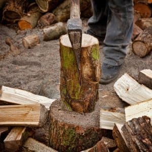 Firewood on the chopping block