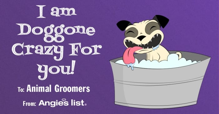 valentine animal groomers dog
