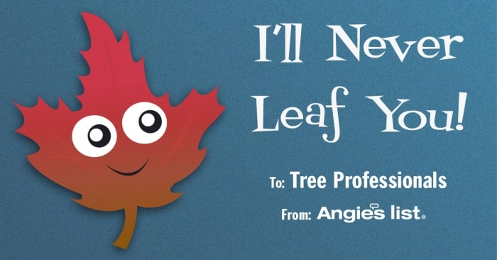 valentine tree care