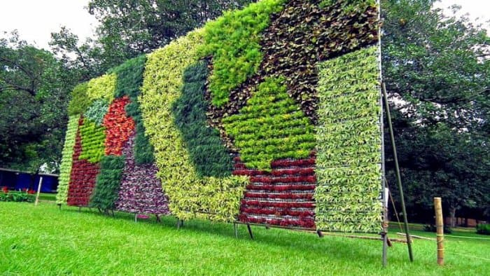 A large vertical garden with diffferrent colored plants