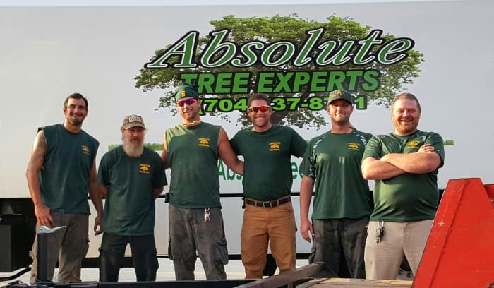 crew of absolute tree experts posing in front of sign