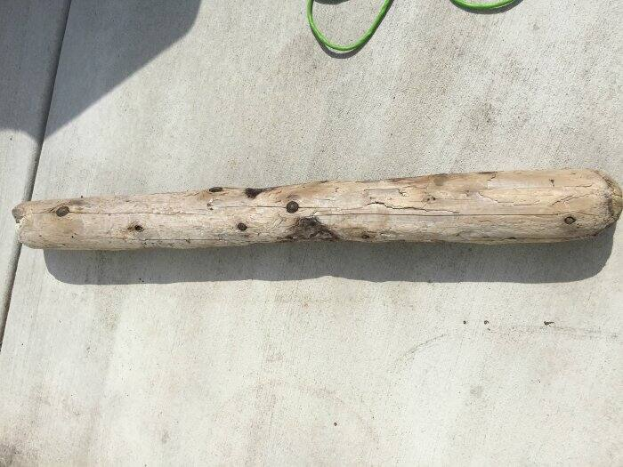 straight piece of driftwood