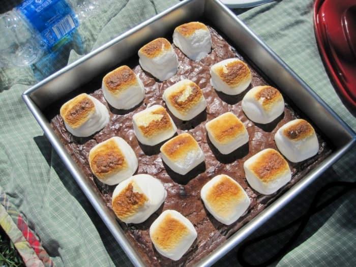 brownies in pan at picnic
