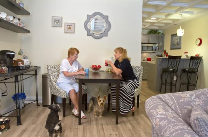 two women sitting at table with dogs at feet