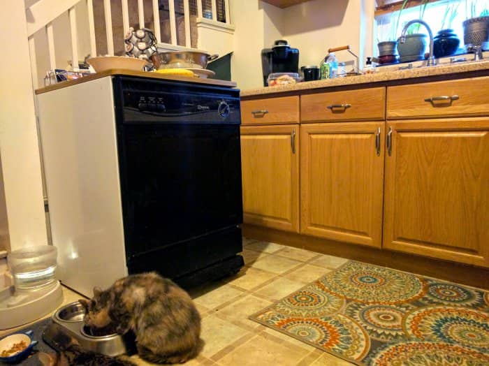 A Maytag Portable Dishwasher In The Kitchen Of An American Foursquare Home  In Kansas City,