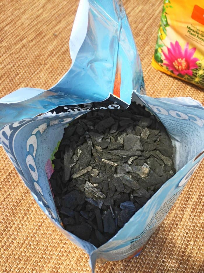 activated charcoal for DIY terrarium
