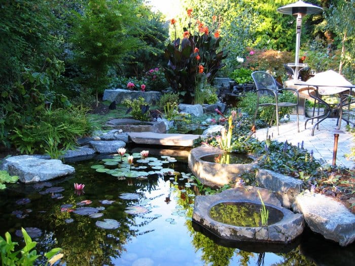 backyard pond garden with flowers and stones