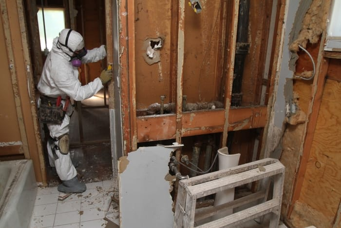 Amazing Technician Removes Drywall To Eliminate Mold In Bathroom