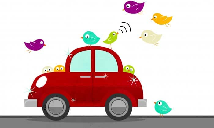 illustration of red car surrounded by birds
