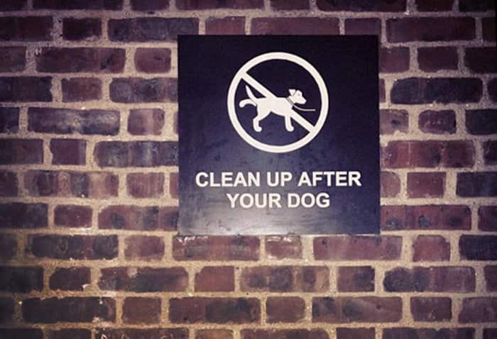 clean up after your dog sign on brick wall