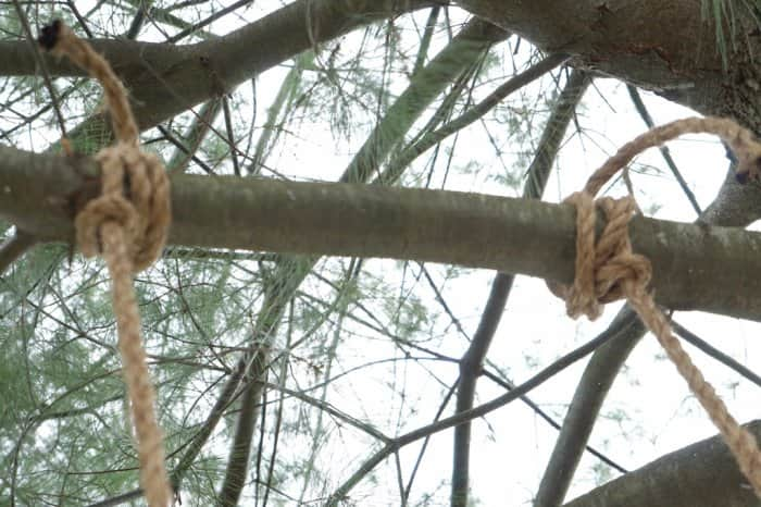 double running bowline knot for tree swing