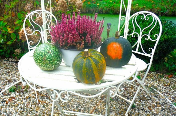 outdoor table with fall decor