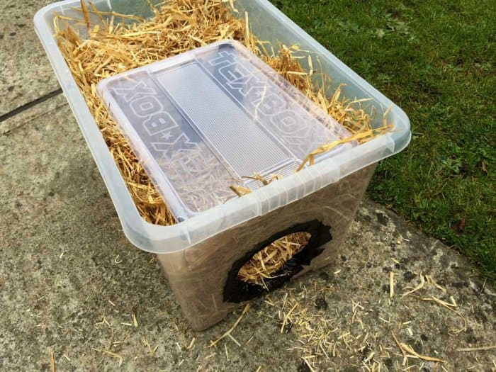 Diy Cat Shelter : How to build a feral cat shelter for winter angie s list