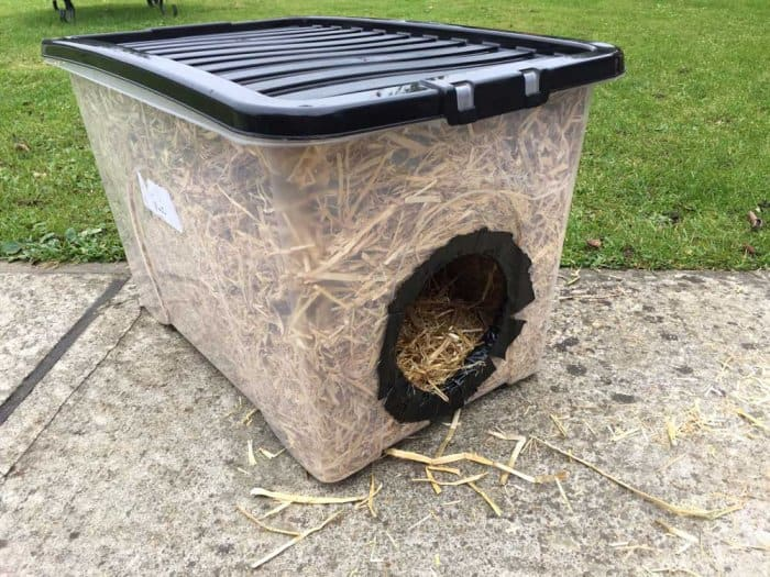 How To Build A Feral Cat Shelter For Winter Angie S List