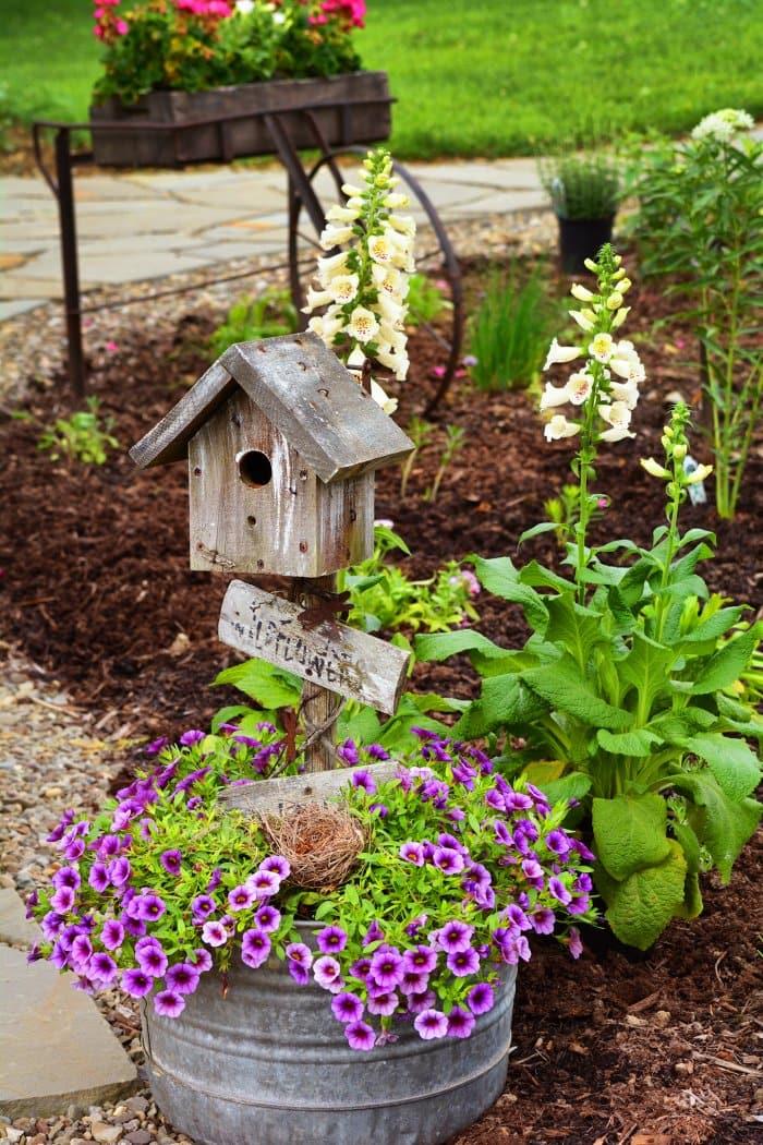 Wood birdhouse and purple flowers