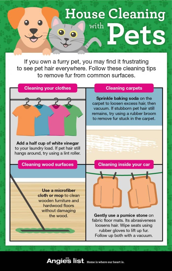 house cleaning with pets infographic