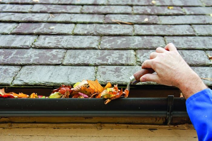 Clean425 Gutter Cleaning In Seattle Wa