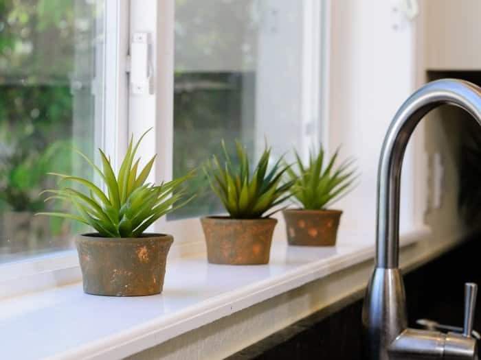 three small plants on window sill