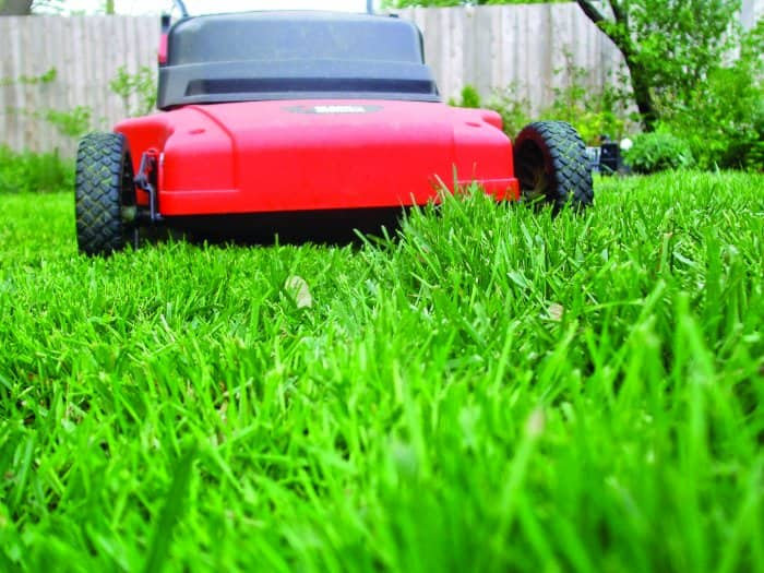 Green Grass Lawn Care Nebraska : Mow your lawn like a putting green raise the blade to prevent grass