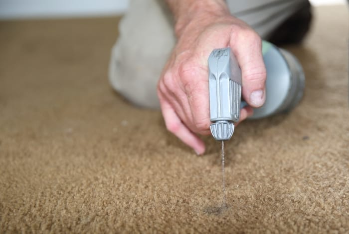 spraying carpet dye in carpet