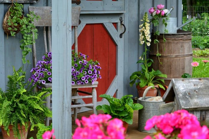 flowers on garden shed porch
