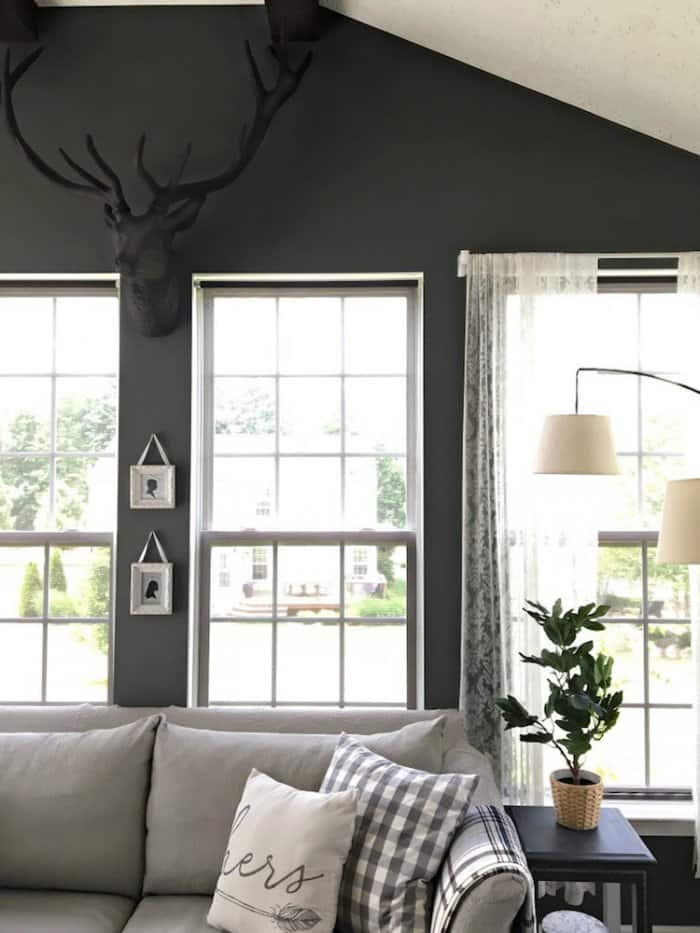 sunroom with dark walls