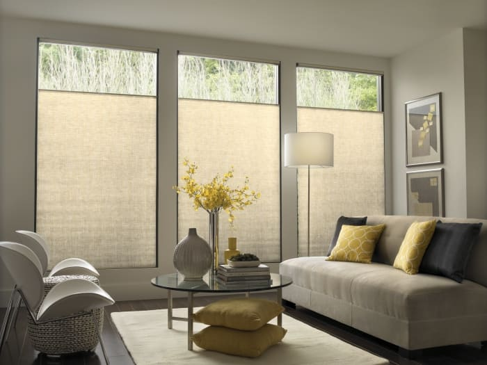 cellular shades on tall windows
