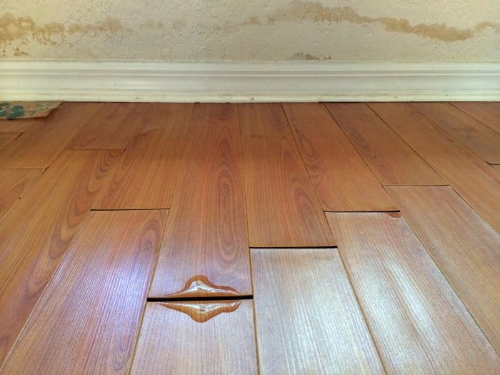 Image result for Water Damage Wood Floor