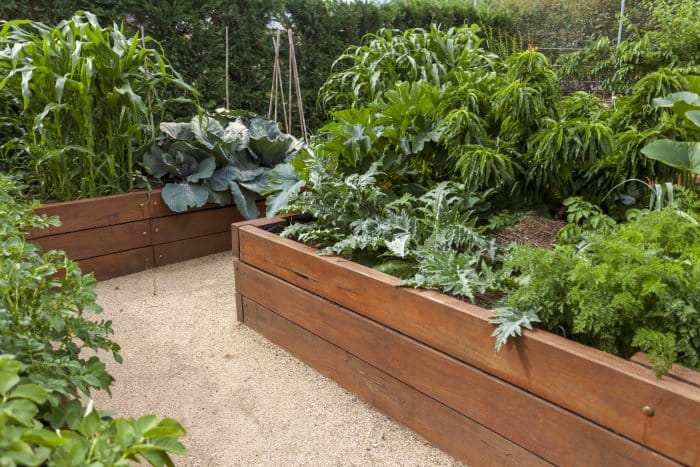 Consider adding raised garden beds to your landscaping. (Photo courtesy of iStock Photo)