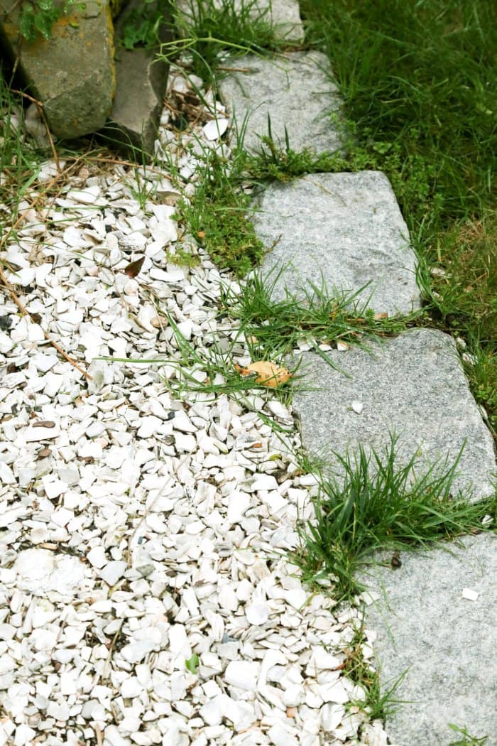 Weeds can get into the smallest of spaces. (Photo courtesy of Melissa Caughey/Tilly's Nest)