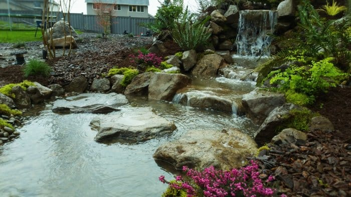 Backyard pond and waterfall by Affordable Ponds