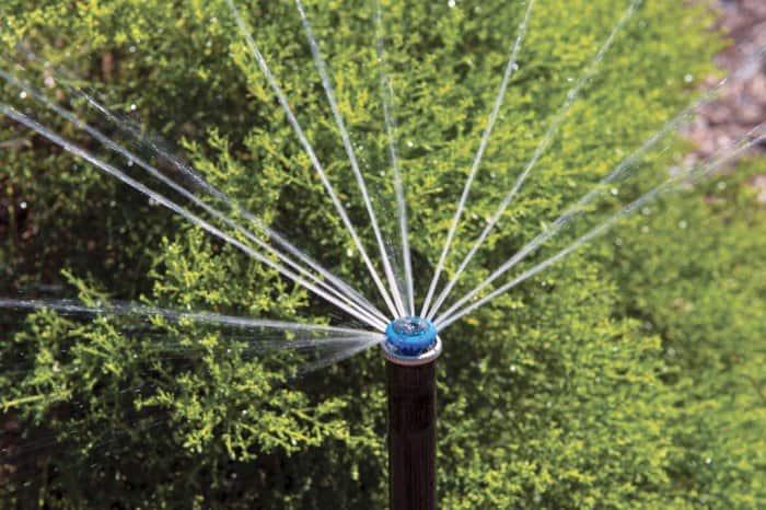 MP rotator sprinkler head by Hunter Industries