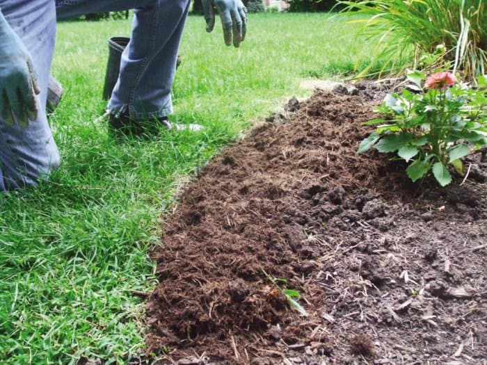 A homeowner edges and mulches a flower bed.